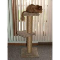 Double Shelf Pedestal - Cat Stand