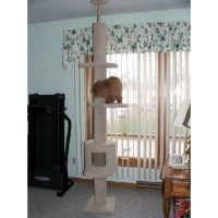 Floor/Ceiling Cat Climbing Tree with House