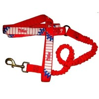 Philadelphia Phillies Bungee Ribbon Pet Leash
