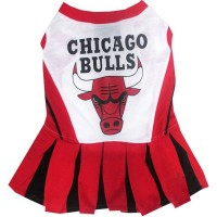 Chicago Bulls Cheerleader Pet Dress