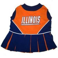 Illinois Fighting Illini Cheerleader Pet Dress