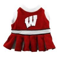 Wisconsin Badgers Cheerleader Dog Dress