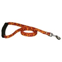 Minnesota Golden Gophers EZ Grip Nylon Pet Leash