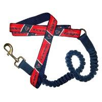 Houston Texans Bungee Ribbon Pet Leash