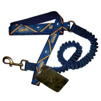 Buffalo Sabres Bungee Ribbon Pet Leash