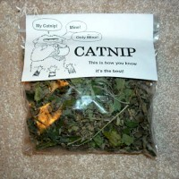 TWO Bags Natural Catnip - Cat Toy